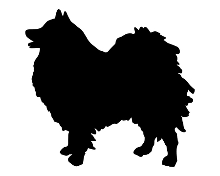 companions: The black silhouette of a German Spitz