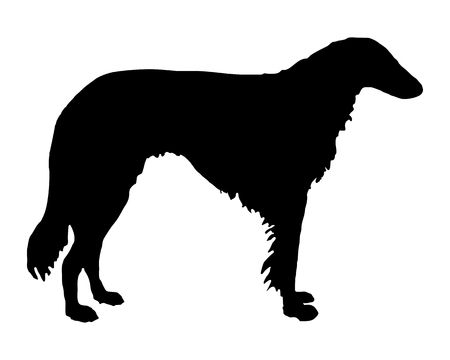 The black silhouette of a longhaired Sighthound Stock Vector - 5772165