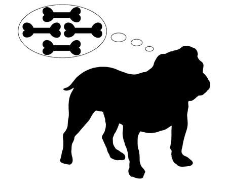 Hongerig Engels bulldog dromen van vele botten