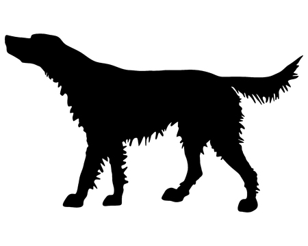 The black silhouette of an Irish Red Setter