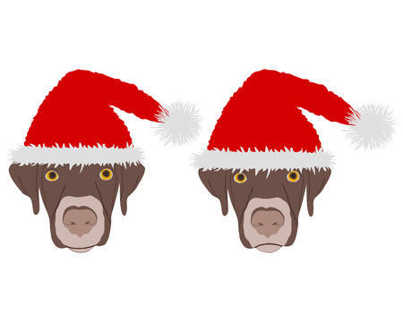 pompon: Two dog heads with red santa claus caps Illustration