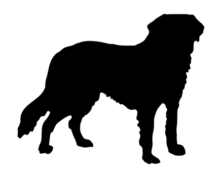 The black silhouette of a Saint Bernard dog