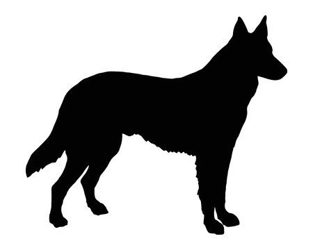 working animal: The black silhouette of a Shepherd Dog Illustration