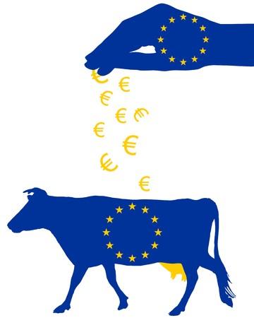 cash crop: European milk subsidies