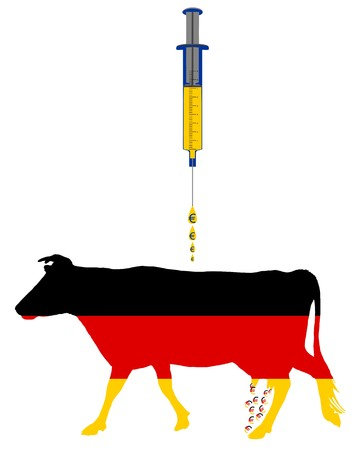 German cow and european cash injection photo