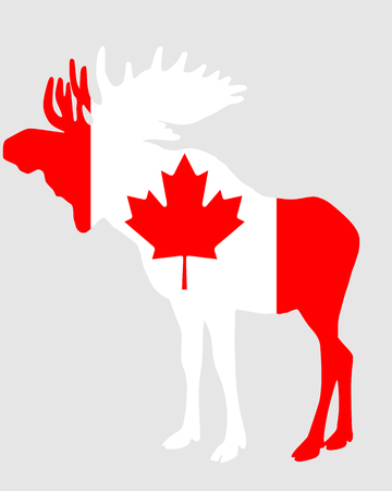 Mosse in flag of canada Stock Vector - 7185343