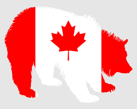 Canadian bear Stock Vector - 7185357