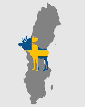 Swedish moose photo