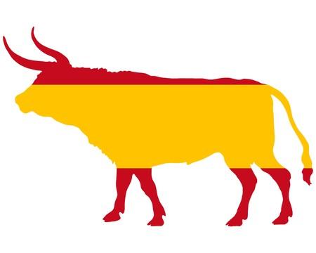bull fight: Spanish bull