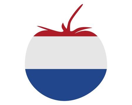 Dutch tomato Ilustração