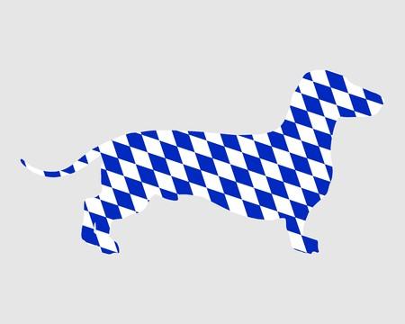 badger dog: Bavarian badger
