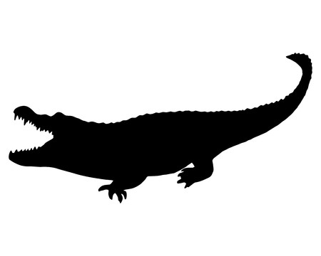 Black Alligator Stock Vector - 7508211