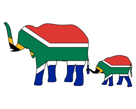 south african: South African elephants Illustration
