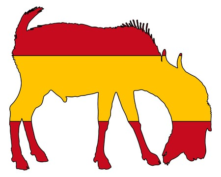 billy: Spanish he-goat