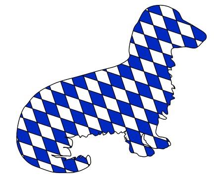 longhaired: Bavarian longhaired badger
