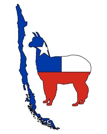 Chilean alpaca Vector