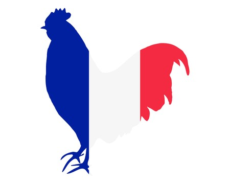 french flag: French cock