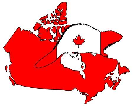Canadian Beaver Vector