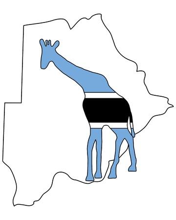 botswana: Botswana giraffe