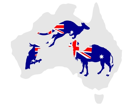 australian animal: Animales de australianos
