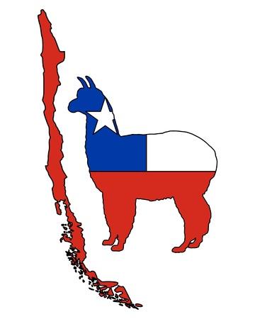 Chilean alpaca photo