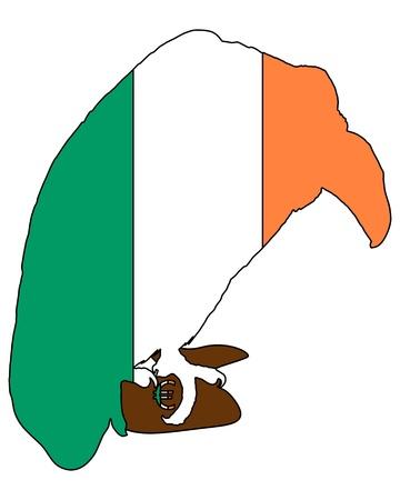 broke: Irish broke vulture