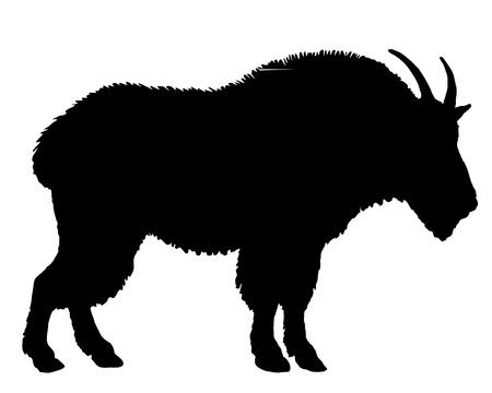 Silhouette di capra di montagna Archivio Fotografico - 8538750