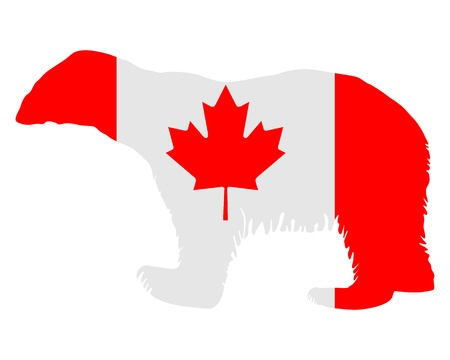 Canadian polar bear Stock Photo - 8538748