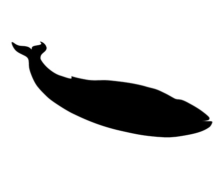 Blue whale silhouette Stock Photo - 8618692