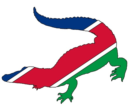 namibia: Crocodile Namibia
