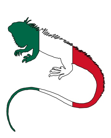Iguana Mexico photo