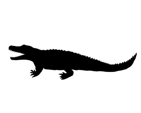 nile: Nile crocodile silhouette Stock Photo
