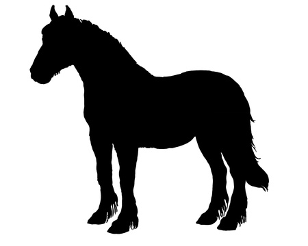 draft horse: Horse Silhouette Stock Photo