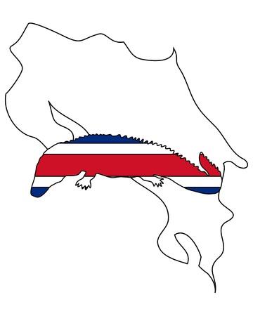 caiman: Caiman Costa Rica Stock Photo