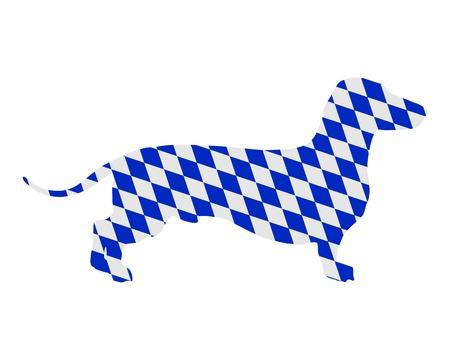 Bavarian badger photo