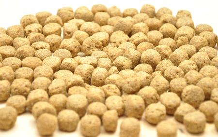 Imagen detallada pero simple de comida para perros Foto de archivo - 8731265