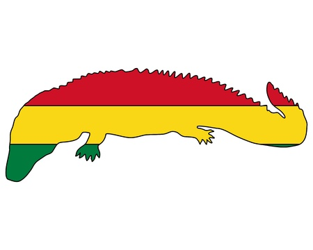 caiman: Caiman Bolivia