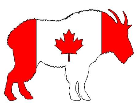 Mountain goat Canada Stock Vector - 8812728