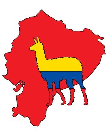 the lama: Lama Ecuador
