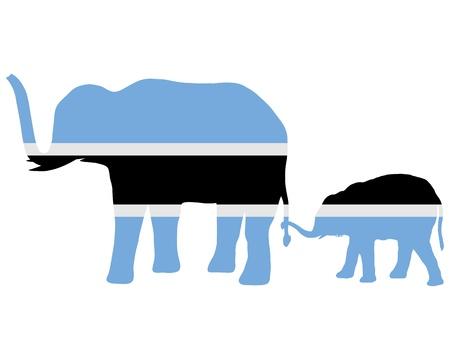 botswana: Botswana elephants