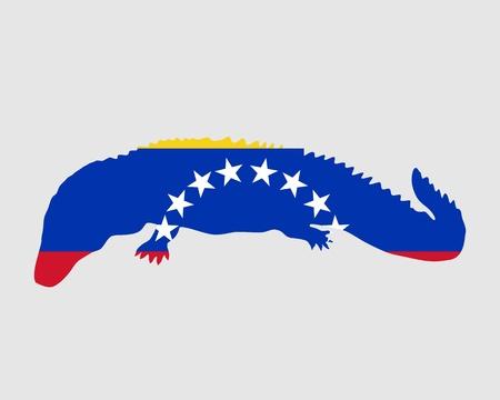 caiman: Caiman Venezuela