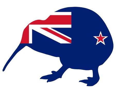 new zealand flag: Kiwi neozelandese Vettoriali