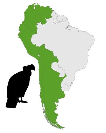 andean condor: Andean Condor distribution