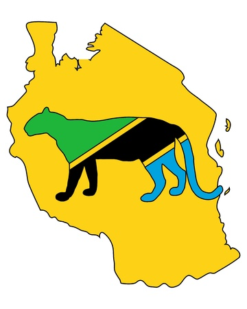 afrika: Tanzania leopard