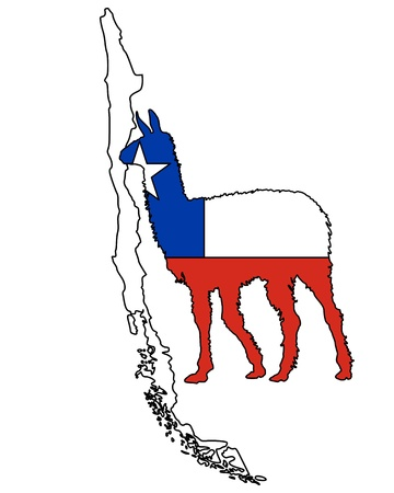 the lama: Lama Chile Illustration