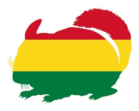 chinchilla: Chinchilla Bolivia