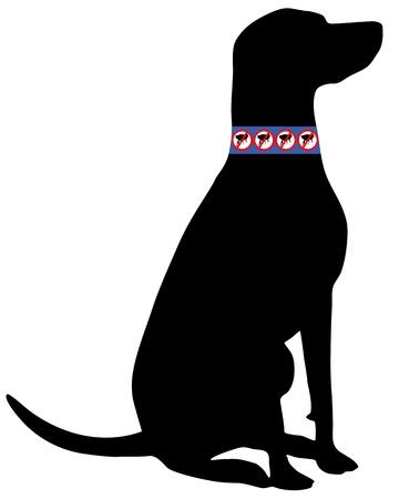 Dog with flea collar Stock Vector - 9074144
