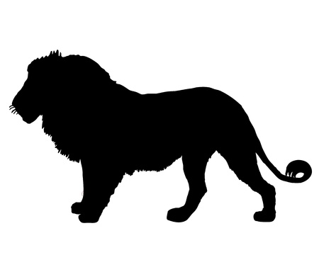 animal fauna: Lion silhouette