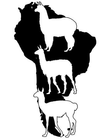 Lama, Guanaco, Alpaca Vector