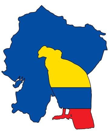 ecuador: Andes Condor Ecuador